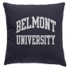 Image for BU SPIRIT PILLOW