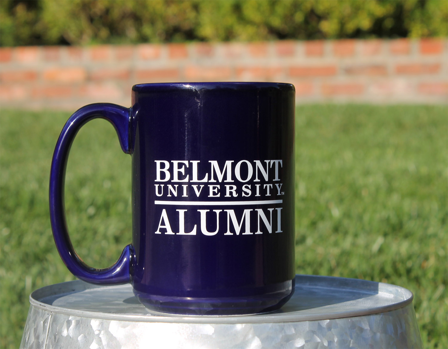 Image For ALUMNI MUG