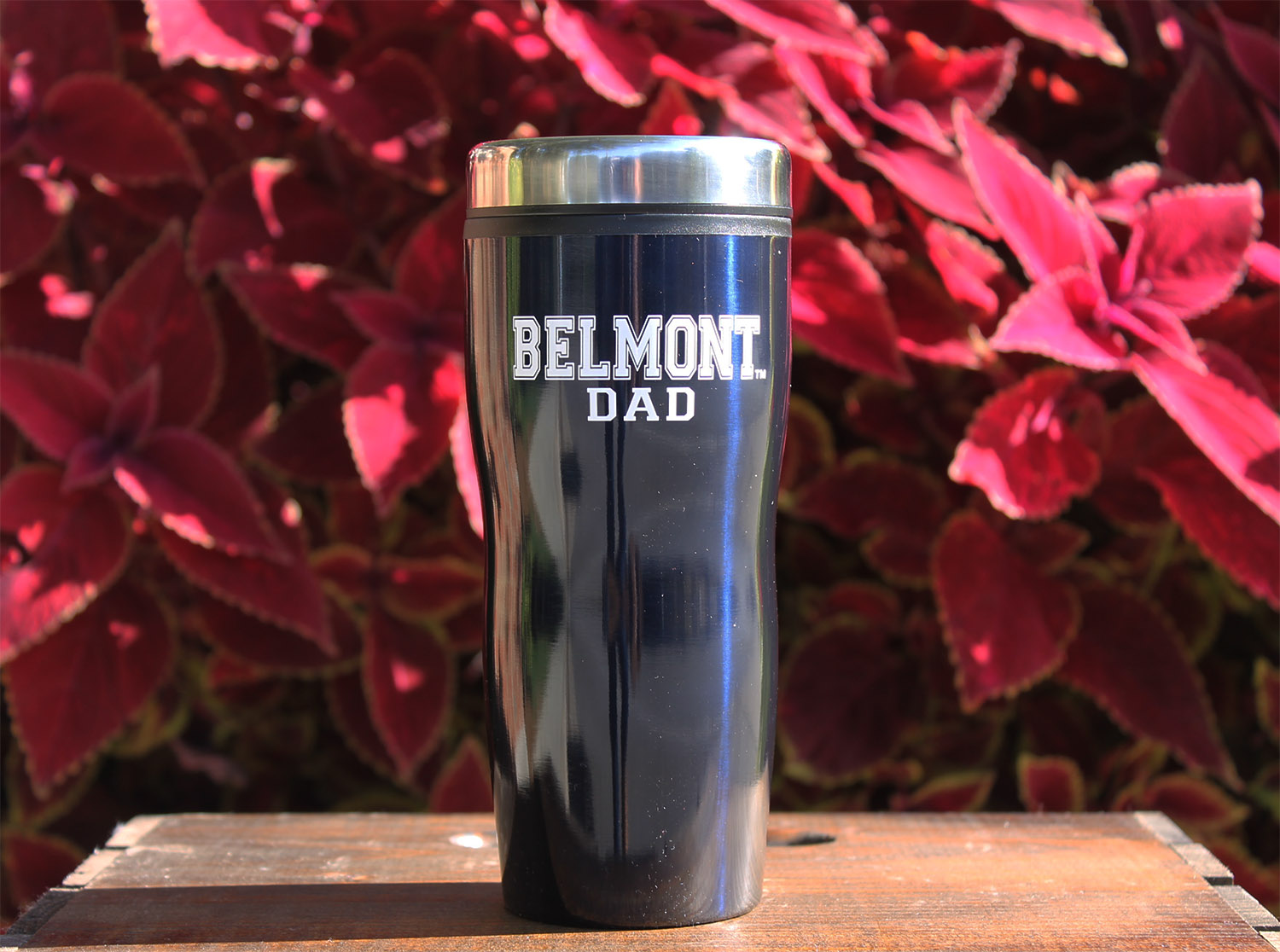 Image For DAD TRAVEL MUG