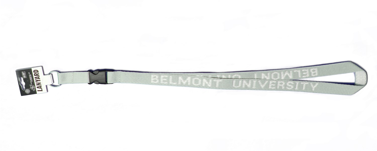 Image For LANYARD- SILVER