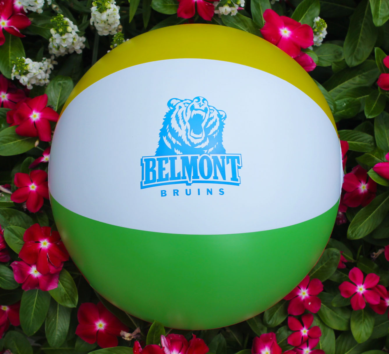 Image For BRUIN BEACH BALL